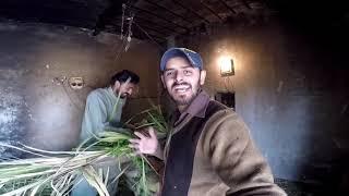 #18Hazari #Village #Jhang                     18 Hazari Jhang