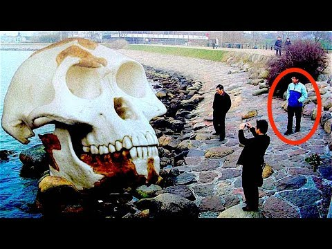 13 Strange Post-Tsunami Findings