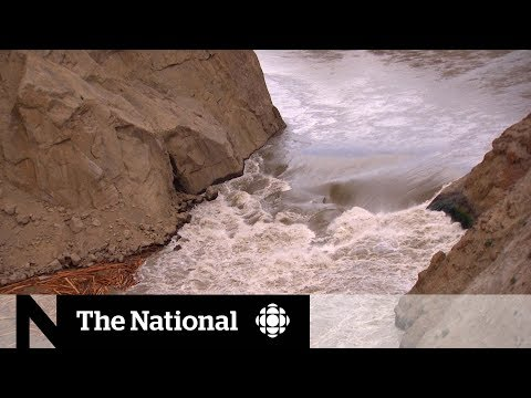 Racing to rescue millions of B.C. salmon stuck behind rock slide