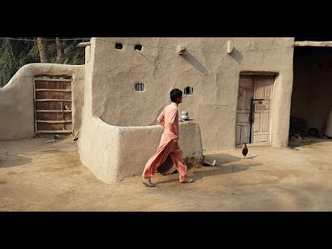 Pakistani Punjab Village Happy Life | Rural Life In Pakistan