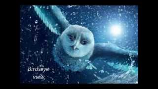 Owl City- To The Sky Lyrics