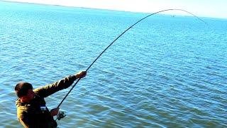 ЭТОТ КАБАН СТАЩИЛ В ВОДУ ВМЕСТЕ С УДОЧКОЙ ВОТ ЭТО рыбалка МЕЧТЫ рыбалка на поплавок 2020
