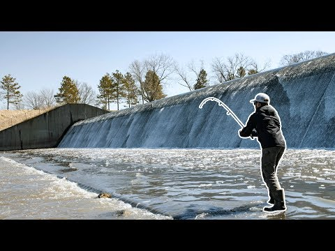 There's A GIANT Living Beneath This SPILLWAY!!! (Surprise Encounter!)