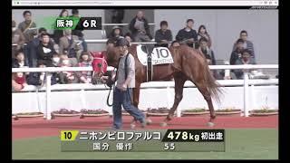 2018年12月2日(日) 5回阪神2日 6R メイクデビュー阪神 ダート 1400m 1...