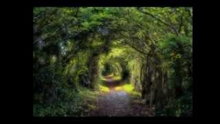 Vagabond (Make A Princess of Me) - Blackmore's Night