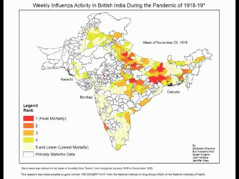 The Spread of Influenza During the Pandemic of 1918 in British India
