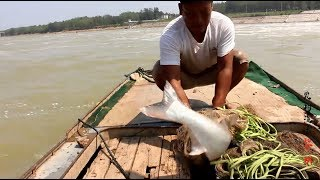 大閘關水,大魚竟把網拖走,大家帶好鋪蓋,...