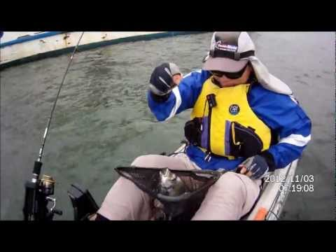 Darwin's Fishing Diary - Captain Cook Bridge Sth & Woolooware Bay - November 3, 2012_V2