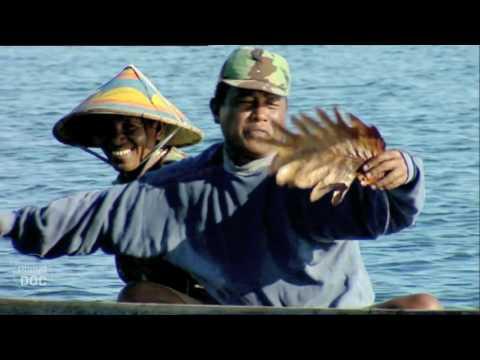 Indonesia. Bajau (Sea Gypsies Tribe)   Tribes & Ethnic Groups