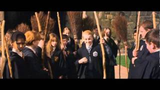 Download How Harry Potter Became The Seeker Of Gryffindor Mp3 and Videos