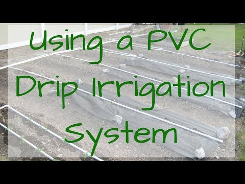 Using a PVC Drip Irrigation System in your Backyard Garden