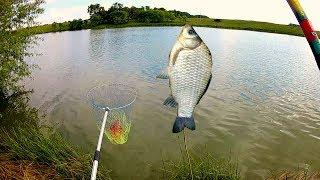 Карась на МАСТЫРКУ. Вот это рыбалка!