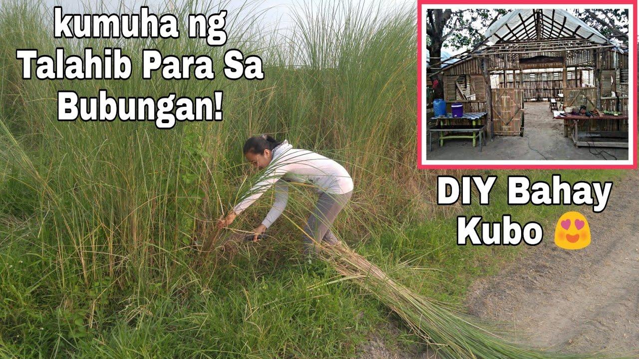 DIY Bahay Kubo | Kumuha Kami ng Talahid Para sa Bubong | Nagpainum ng Tubig sa mga Alagang Hayop
