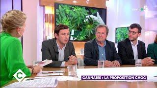 Cannabis : la proposition choc - C à Vous - 20/06/2019