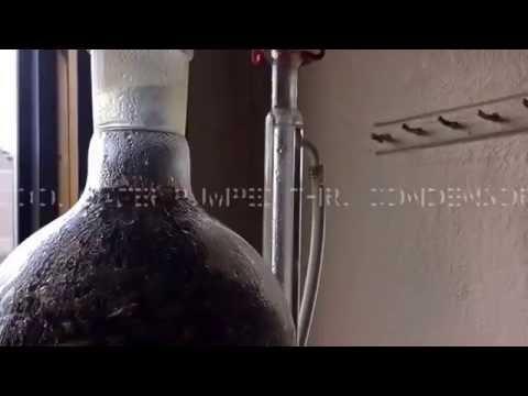Essential oil Steam Distillation, Poleo, Mentha arvensis, Paul Manski Bioregional Herbalist