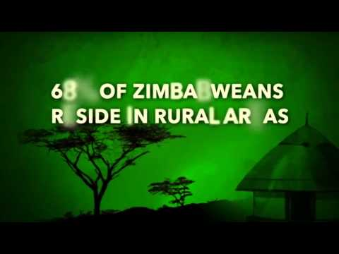 The Zimbabwe Livelihood and Food Security Programme