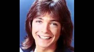 David Cassidy - The Puppy Song