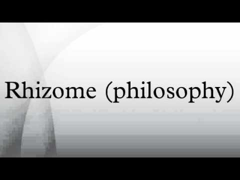 Rhizome (philosophy)