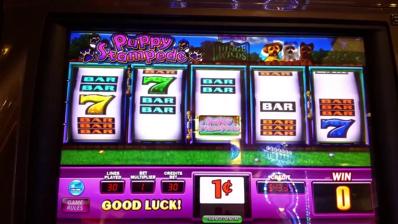 Puppy Stampede Slot Machine