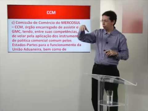 Aula sobre a a estrutura institucional do Mercosul - Roberto Caparroz
