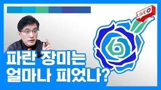 [라이브] 파란 장미는 얼마나 피었나? 진척 상황 보고 ...