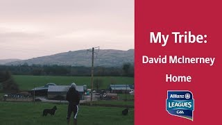 MyTribe - David McInerney | Home