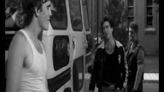 "rumble fish ""la ley de la calle trailer"" Trailer de Jorge Miranda"