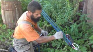 видео Как валить деревья бензопилой: этапы работ