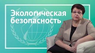 видео Экология и безопасность жизнедеятельности (1)