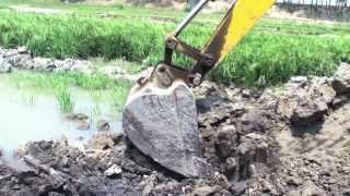 Valuable topsoil removed from farmlands, Bogra, Bangladesh