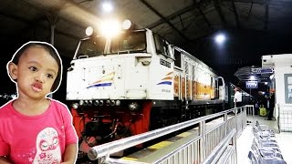 Naik Kereta Api Tut Tut Tut ❤ Lagu Anak Indonesia