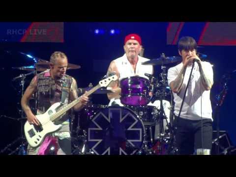 Red Hot Chili Peppers  Dani California  Raleigh, 2017 SBD audio