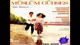 Muslum Gurses - Yaprak Dokumu Resimi