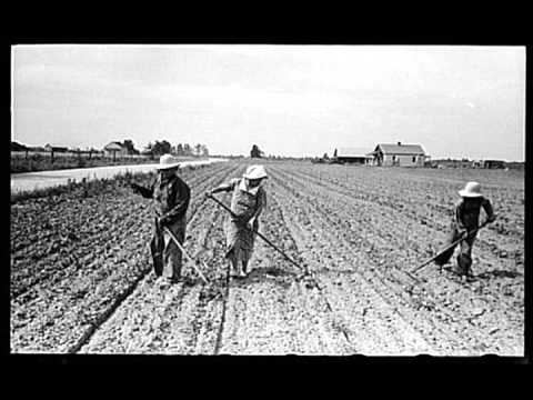 chapter 25 the grapes of wrath John steinbeck recognized that one of the most criticized elements of the grapes of wrath was his  chapter 2 in the grapes of wrath  25, 27) assign.