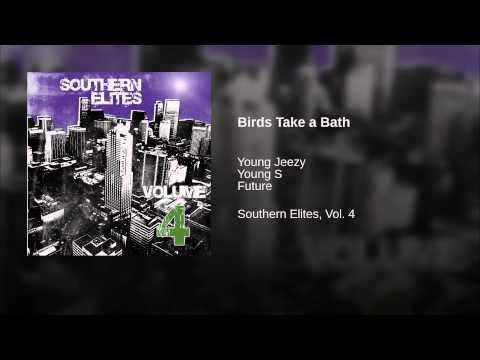 Birds Take a Bath