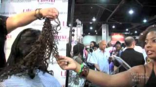 Bronner Brothers Show, February 2010