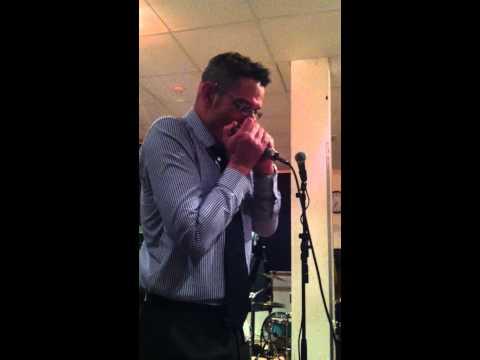 Blues Harmonica Riff With A Silverfish Harp Microphone