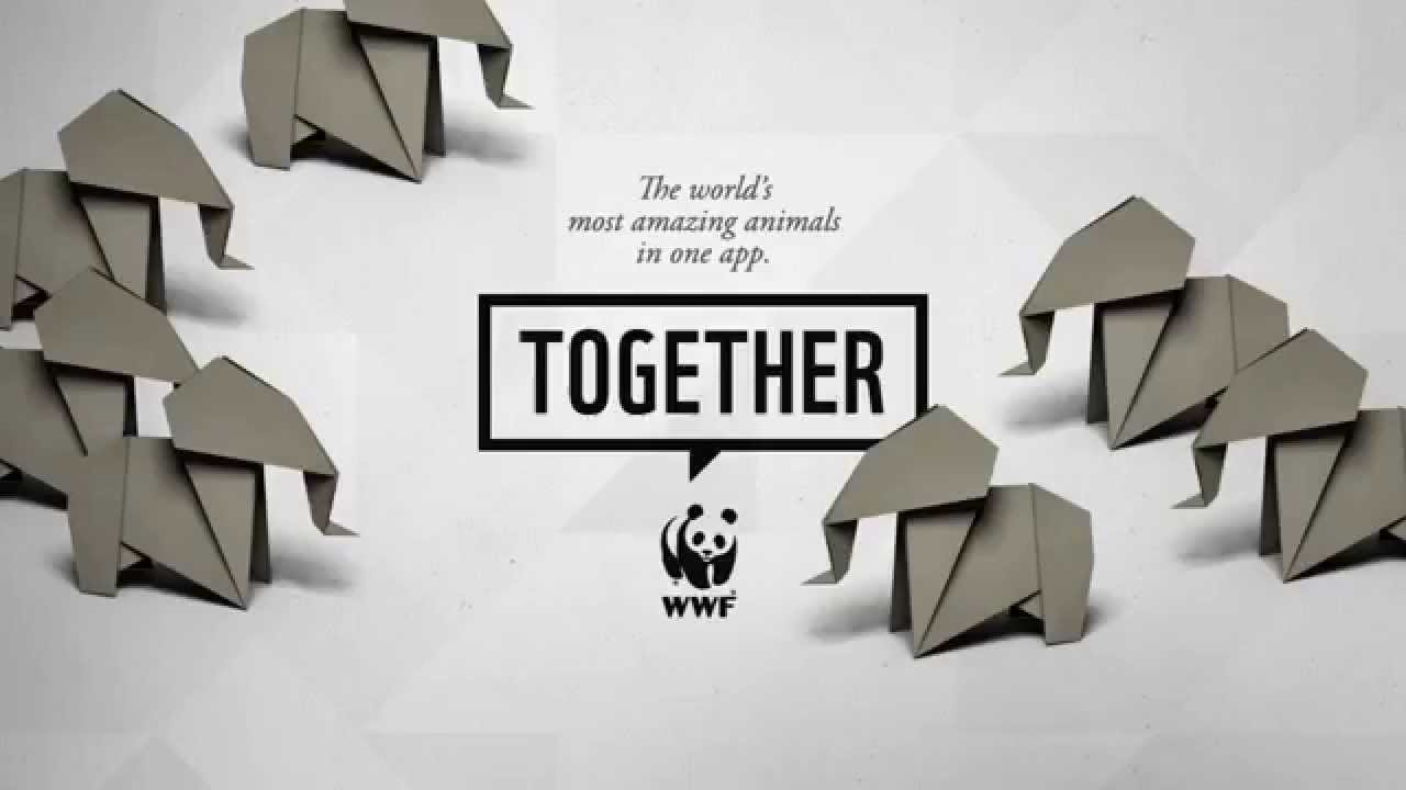 WWF Together - Elephants - YouTube