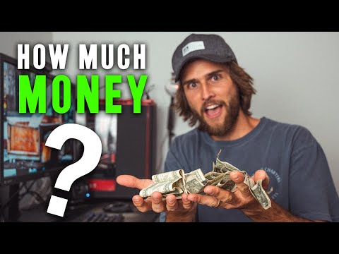 How Much Money I Made As A Systems Analyst Intern (Computer Science Student)