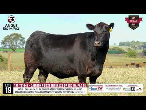LOTE 19   TAT TE 1441 CAMBONA BEST INTEREST DA RIO DA PAZ TE - Prod. Agência e TV El Campo