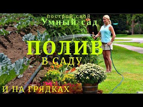 Полив растений в саду, в огороде и на грядках.  Цена на оборудование для полива в теплице.