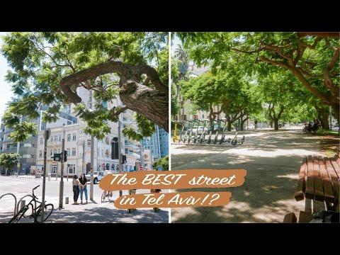 The BEST Street In Tel Aviv?? | Walking Around Tel Aviv Ep.2 | Rothschild Boulevard | Travel Israel