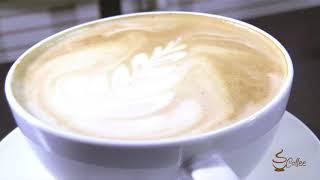 Stationary Frenzy and Coffee Corner