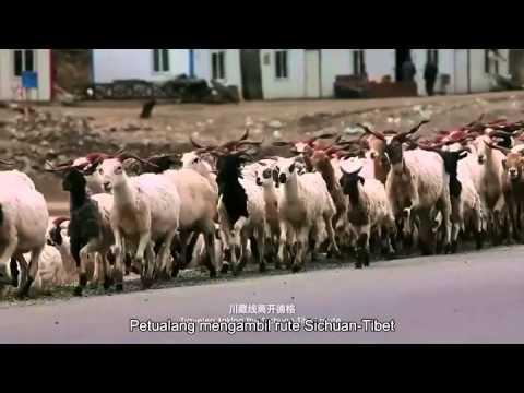 Menuju Tibet yang luar biasa