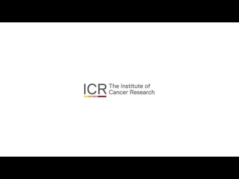 Video Production: ICR - The Discovery Club