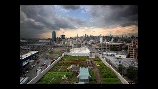 Urban Farming Field Trip - Freewheel Farms