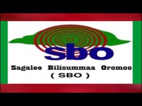 SBO Ebla 21,2017. Oduu