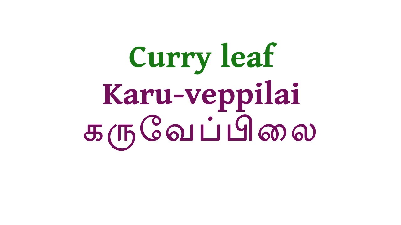 How to pronounce Curry Leaf in Tamil #1