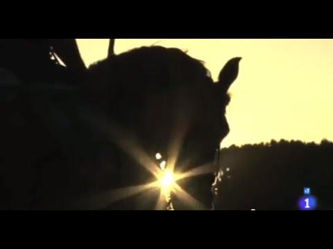 Trashumancia, Los últimos vaqueros - Comando al sol