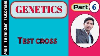 Genetics-Test Cross-XII/NEET